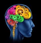 Funkcje prawej półkuli mózgu